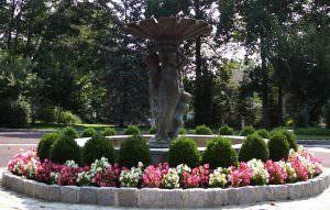 Fountain Landscape